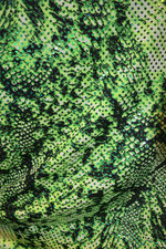 REPTILE - grön