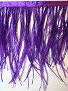 STRUTSFJÄDERFRANS - purple