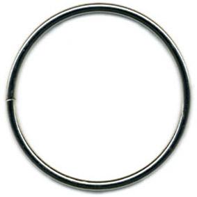 RING silver - 5,5 cm